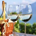 cileanska-vina