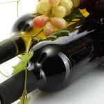 vina-za-ljeto