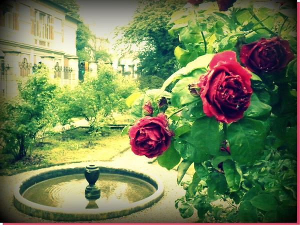 Roseto Botanico di Cavriglia