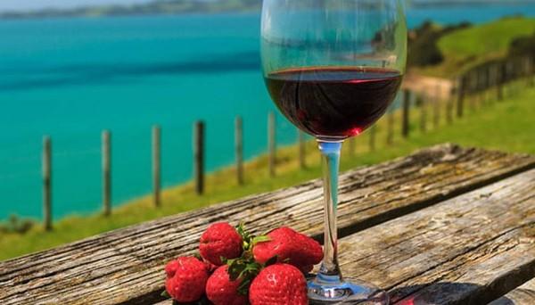 vino_jagode