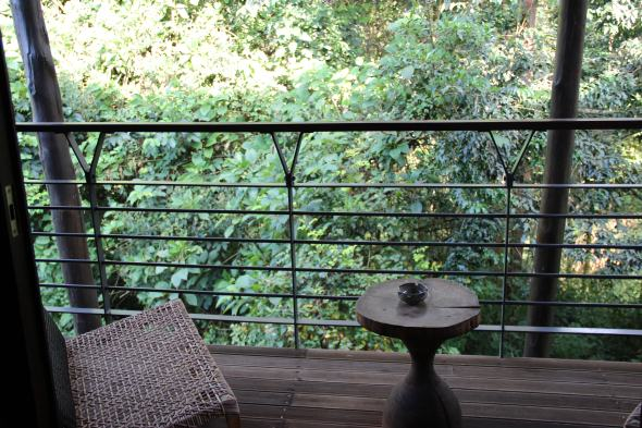 nyungwe-forest-lodge-12
