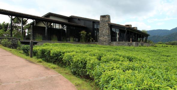 nyungwe-forest-lodge-13