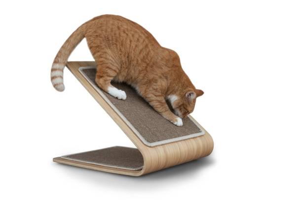 astoria-cat-scratcher