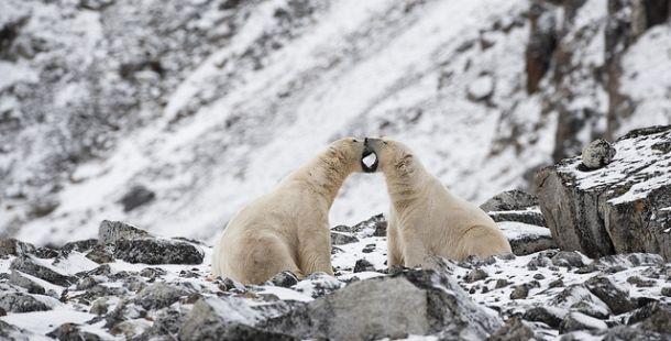 longyearbyen-7