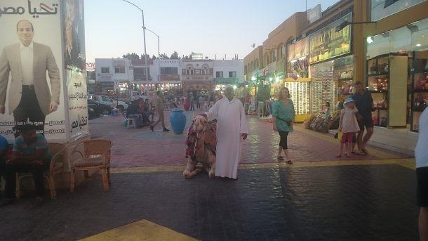 sharm-el-sheik-9