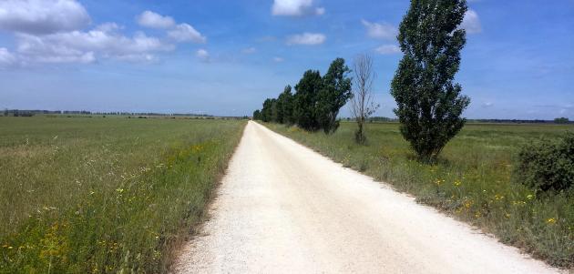 Put svetog Jakova