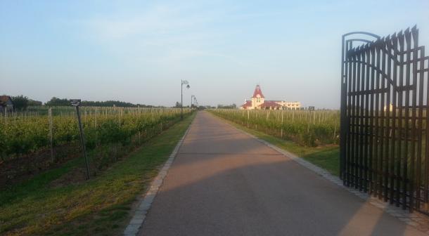 vinarija-zvonko-bogdan-4