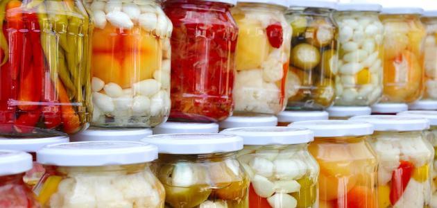 fermentirana-hrana