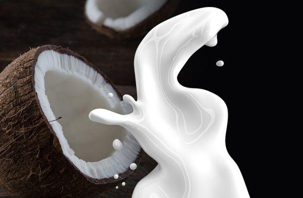kokosovo-mljikeko-1