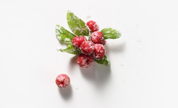 energie-de-vie-cranberry