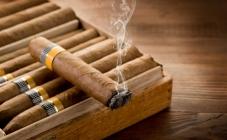 Cigare izvor velikog muškog užitka ali i mnogih žena