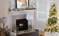 Kako odabrati idealno božićno drvce