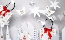 Božićna čarolija Borbolete i Saše Šekoranje