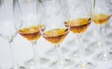 Vinart – dodijela vinskog Oscara