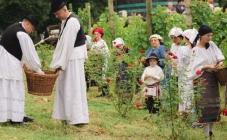 Pet vrućih preporuka za ljetni odmor u Požeško-slavonskoj županiji
