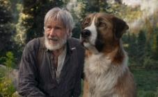 "Harrison Ford u filmu ""Zov divljine"""