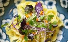 Ljekovito cvijeće u tanjuru – dobar tek!