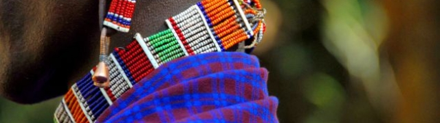 Tanzanija zemlja za ljubitelje safarija