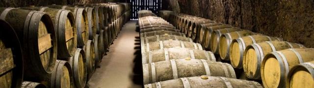 Južnoafrička vina najbolje od tradicija Starog kontinenta i Novog svijeta