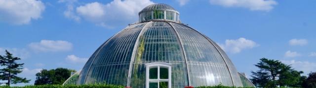 Kraljevski botanički vrtovi u Kewu osvajaju natprirodnom ljepotom