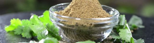 Korijander začinska biljka koja pozitivno utječe na naše zdravlje
