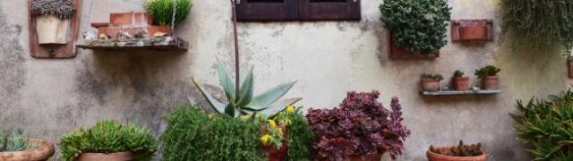 Bajkoviti lipanj u vašem vrtu