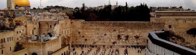 Zid plača