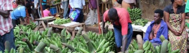 Kigali:glavni grad Ruande koji se pamti