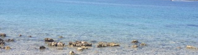 Krapanj-otok spužvarstva
