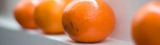 Kandirane klementine – okus mandarine i naranče u jednom