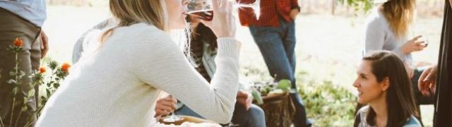 Odmarate li se uvečer uz čašu vina ili pokoju više?