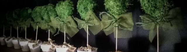 Žena koja biljke pretvara u ljubav Lidija Lešnjak
