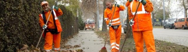 U Beču i otpalo lišće vrijedna sirovina