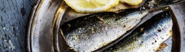 Riba u soli: donosimo vam recept za pripremu brancina