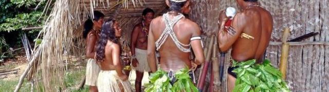 Amazonska prašuma i njene skrovite tajne