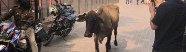 Agra vjerojatno najposjećeniji grad u Indiji