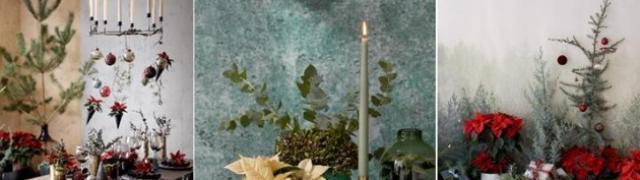 Inspiracija za blagdansko dekoriranje s božićnim zvijezdama u prirodnom stilu