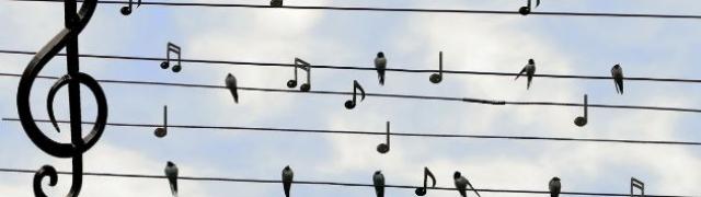 Glazbeno obojani dan u obiteljskom okruženju