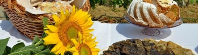 Održan  2. Pjenušavi srijemski doručak u vinogradu!