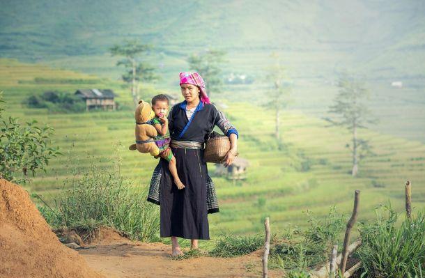 Banaue polja riže