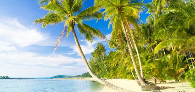 Egzotično lijep Fidži
