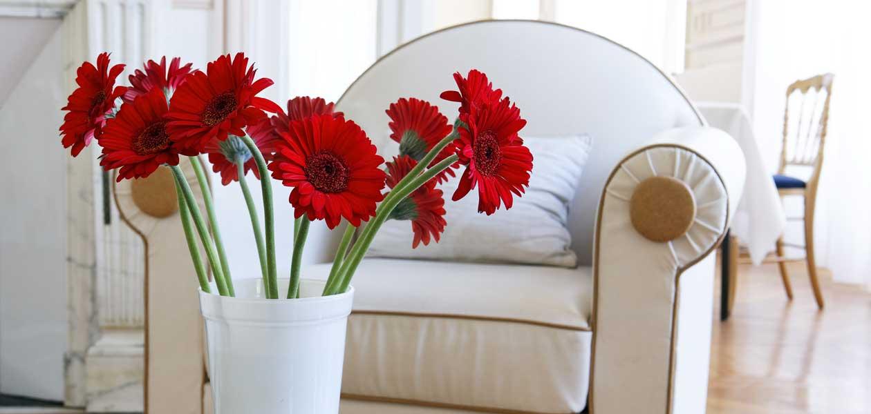 cvijece_hotel