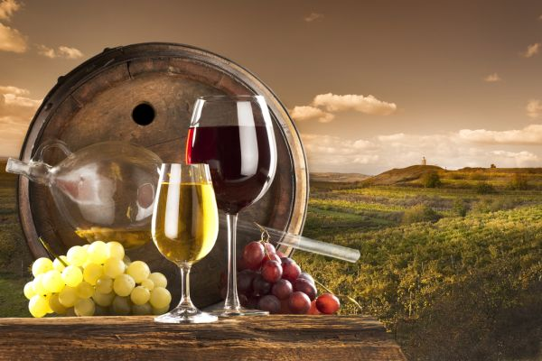 Degustacija Vina u Australiji