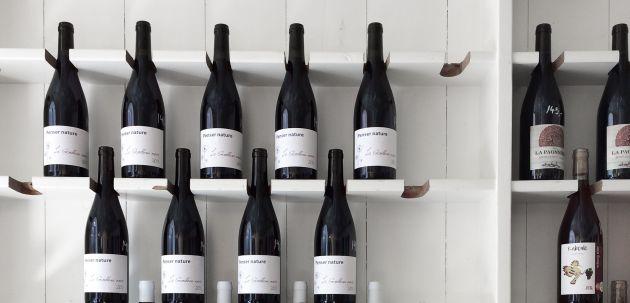 vinski rijecnik opis vina