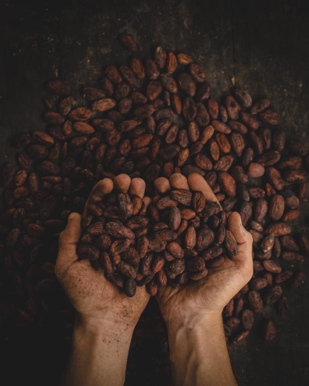 kakao kakaovac