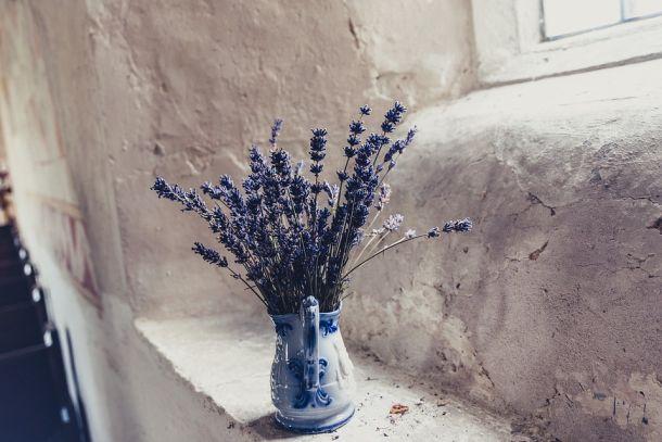 lavanda cvijeće vaza stan interijer ideja