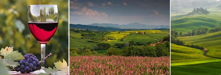 tuscany_wine_tour