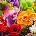 cvijece_s