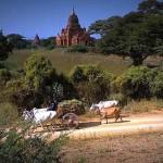 Bagan_grad_2