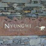 nyungwe-forest-lodge-18